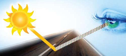 Окуляри Polaroid для водіїв ®Спеціалізований інтернет - магазин ... 9fc26ba8a9f23